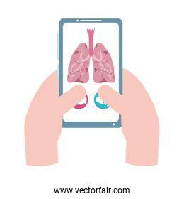 online doctor, hands with smartphone consultant medical protection covid 19, flat style icon