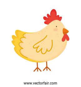hen poultry farm animal isolated icon on white background