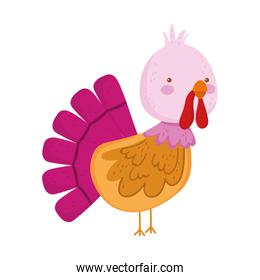 turkey cartoon farm animal isolated icon on white background