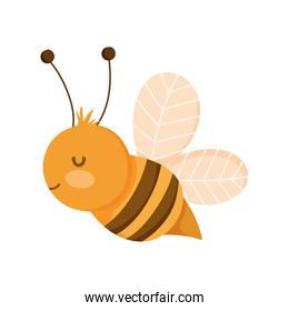 bee insect farm animal isolated icon on white background