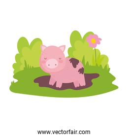 pig in mud flower grass farm animal isolated icon on white background