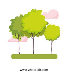greenery trees forest nature clouds isolated icon design