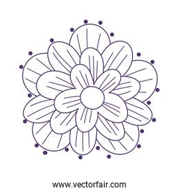 flower petals natural decoration isolated icon on white background line style