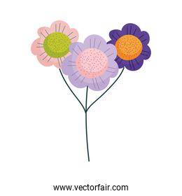 flowers bouquet decoration ornamet nature isolated icon