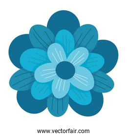 flower petals natural decoration isolated icon on white background