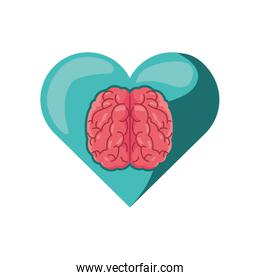 heart with brain on white background
