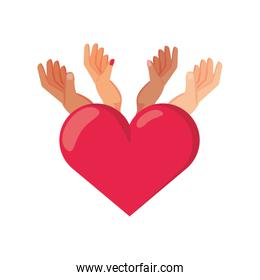 hands with heart on white background