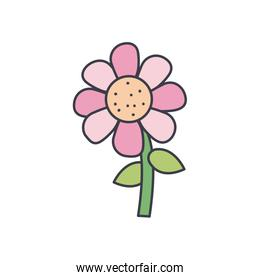 beautiful flower icon, fill style