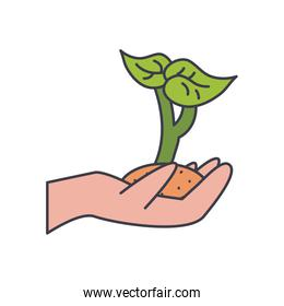 hand holding a plant, fill style