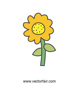sunflower icon, fill style