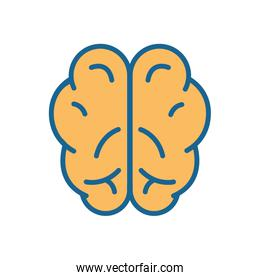 Human brain line and fill style icon vector design