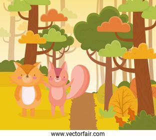 cute squirrel and fox path forest trees nature landscape