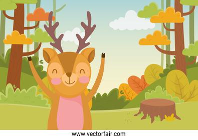 cute fox trunk trees nature forest foliage landscape
