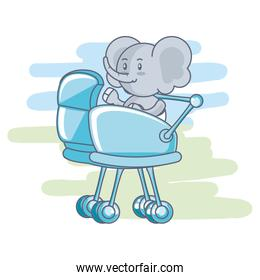 cute elephant baby animal in baby cart