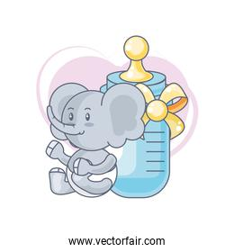 cute elephant baby animal and bottle milk
