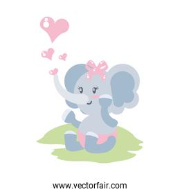 cute female elephant baby with hearts love