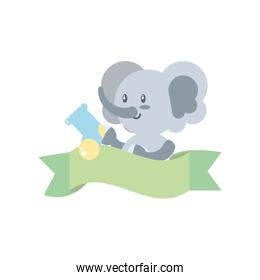 cute elephant baby with sock and ribbon