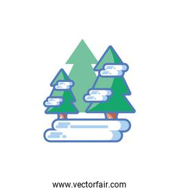christmas tree with snow on white background