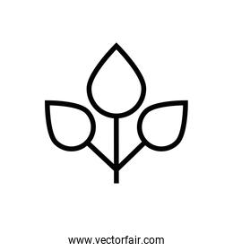 leafs plant ecology line style icon