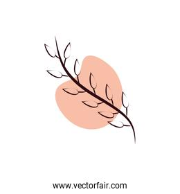 branch with leafs hand draw style