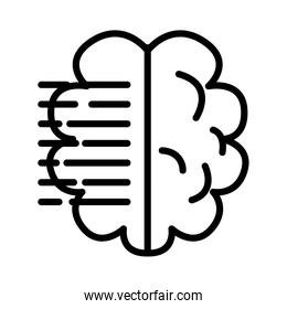 brain human with text lines line style icon