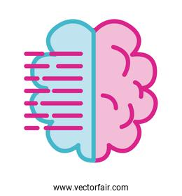 brain human with text line and fill s line and fill style icon