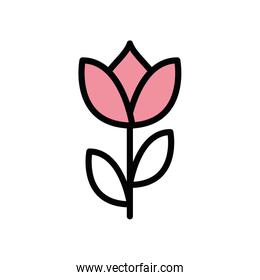 beautiful flower plant isolated icon