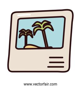 picture of tree palm summer scene fill style icon