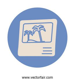 picture of tree palm summer scene block style icon