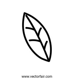 leaf foliage nature icon on white background thick line