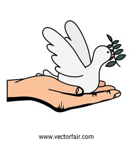 hand lifting dove flying with olive branch