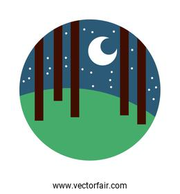 forest landscape night scene flat style icon
