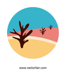 desert landscape with dry plants flat style icon