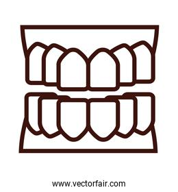 teeth body part line style