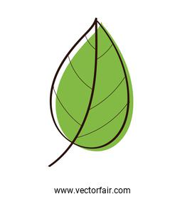 leaf plant ecology hand draw style icon