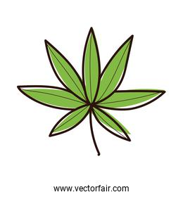 leafs plant ecology hand draw style icon