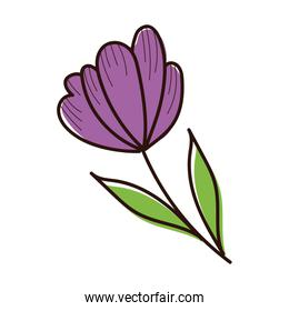 beautifull flower with leafs garden spring hand draw style