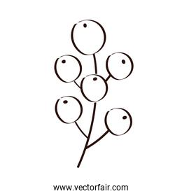 branch with seeds plant ecology line style icon