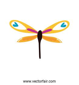 dragon fly insect line style icon