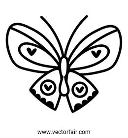 beautiful butterfly insect with hearts line style