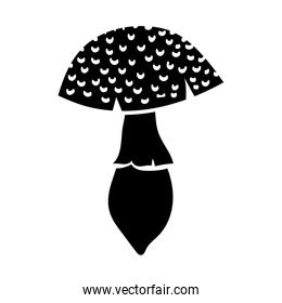 fungus plant silhouette style icon