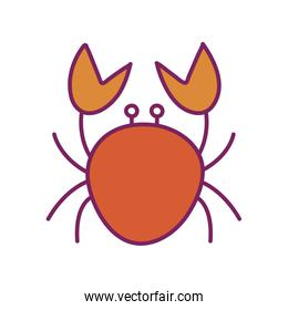 Isolated crab line and fill style icon vector design