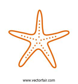 Isolated sea star line style icon vector design