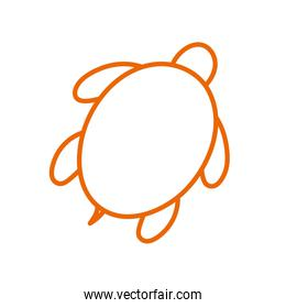 Isolated turtle line style icon vector design