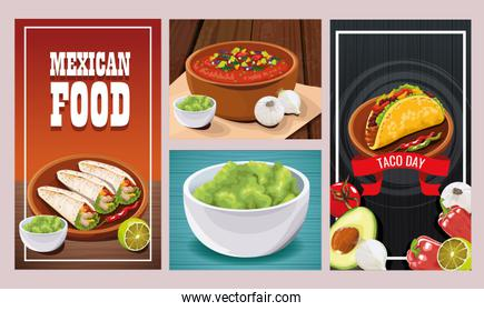 Delicious Mexican Food sets designs