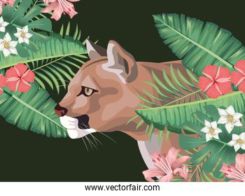 wild cougar with tropical foliage