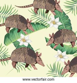 wild armadillos with tropical foliage