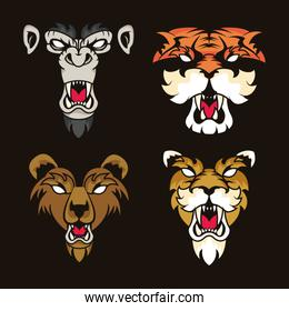 wild animals spirit creative design