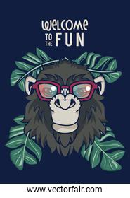 welcome to the fun with gorilla using glasses