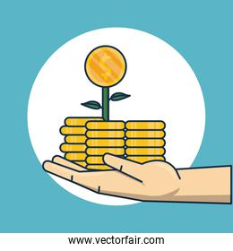 hand human with coins money and plant